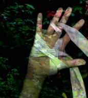 Forest Hands